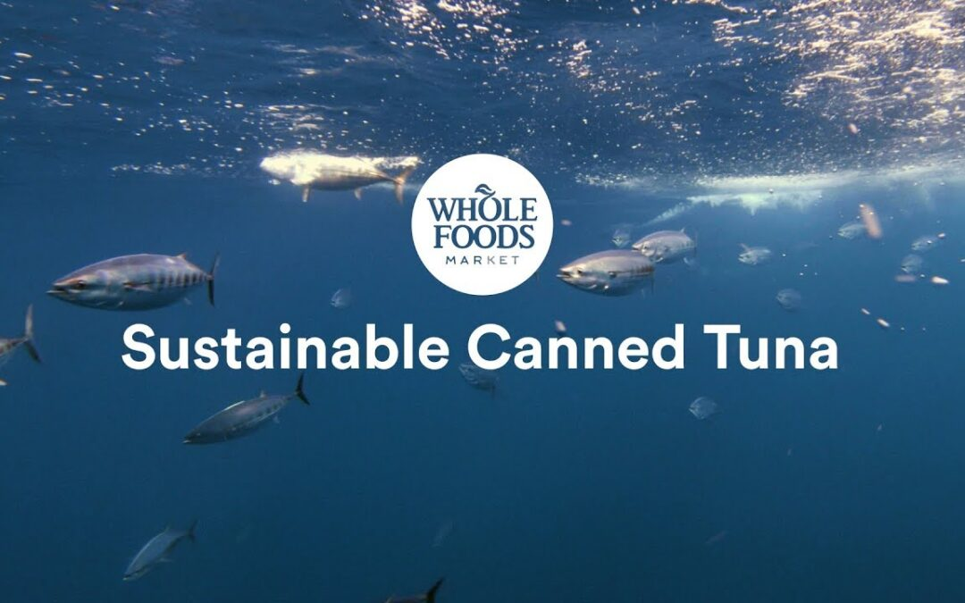 Sustainable Canned Tuna l Whole Foods Market